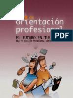 Diccionario - Guía - Elige profesion