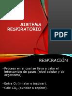 Sistema_respiratorio.pptx