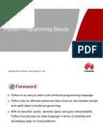 2 Python Programming Basics.pdf