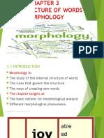 Chapter 3 Morphology (1) (1).pptx