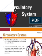 thecirculatorysystem-130618021608-phpapp01