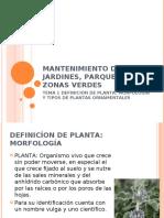 1º La planta MANTENIMIENTO DE JARDINES, PARQUES Y ZONAS VERDES