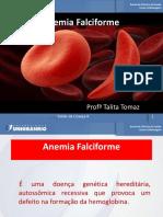 Anemia_Falciforme_e_Leucemia 4