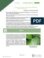Informe de la Bolsa de Cereales de Córdoba