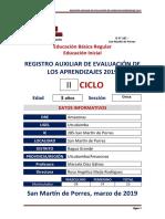REGISTRO  AUXILIAR DE EVALUACION 2019