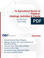 OAV_Mapping_the_Agricultural_Sector_of_Thailand
