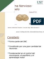 Presentación Cerebelo.pptx