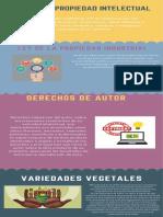 Infografia propiedad intelectual