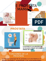 Hume · SlidesCarnivalCA DE PROSTATA.pptx