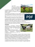 agricultura civicultura
