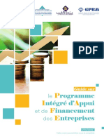 GuidePIAFE.fr.pdf