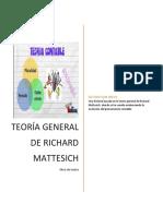 Representacion teoria general contable- richard mattesich .pdf