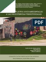 8_DE_LOS_CONFLICTOS_AMBIENTALES.pdf