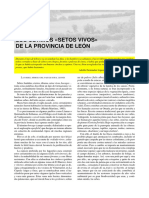 Dialnet-LosUltimosSetosVivosEnLaProvinciaDeLeon-2899947
