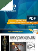 Sistema Nervioso_DamarisGomezMazo.pptx
