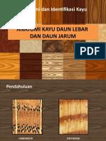 3. Sifat Makroskopis Kayu.pptx