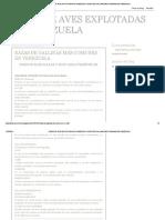 RAZAS DE AVES EXPLOTADAS EN VENEZUELA_ RAZAS DE GALLINAS MÁS COMUNES EN VENEZUELA.pdf