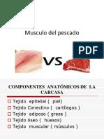 SEXTA CLASE.pdf