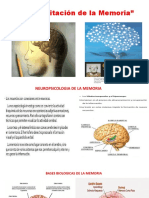 Rehabilitación de la Memoria.pptx