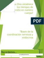 3° coordinación nerviosa y endocrina.pptx