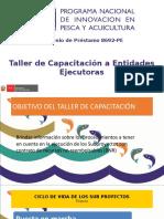 7. PUESTA EN MARCHA_EJECUCIÓN_CIERRE SUBPROYECTOS.pptx