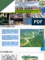 APROVECHAMIENTO FORESTAL, TIPOS DE SISTEMAS