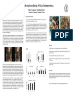 study of visual inderterminacy poster