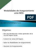 mod_de_aseguramiento_imss