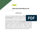 Cuadernillo U3-Macro