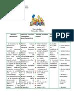 0_plan_remedial_mate_preg.docx