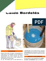 CALDO BORDOLES