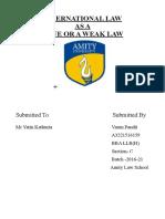 Varun's International project .pdf