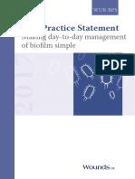 best-practice-statement-making-daytoday-management-biofilm-simple.pdf