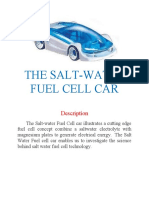 THE SALT water fuel  cell car 1