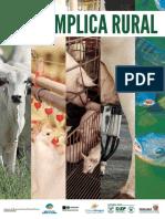 BI_Descomplica_Rural_web