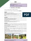 VidaRuralvsVidaUrbana-DR2