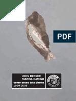 Berger, J. + Camino, M. - Cómo crece una pluma