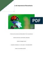 Monografía Escobar, Roa, Silva.pdf