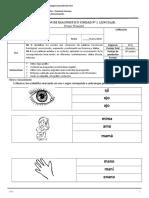 Evaluación diagnostico lenguaje 1° básico 2020.doc