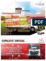 FC9J-Camion