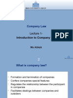 Lecture 1 Introduction to company.ppt