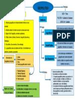 mapa conceptual geopolitica.pptx
