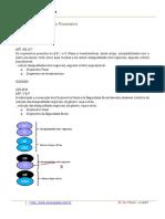 wilsonaraujo-financeiro-orcamentopublico-009.pdf