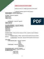 SEGMENTATION PULMONAIRE.doc