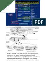MATERIAL ESTUDIANTIL.pdf