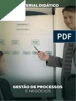 GESTÃO-DE-PROCESSOS-E-NEGÓCIOS.pdf