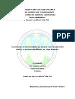Caracterización de las enfermedades que afectan el cultivo de café (Coffea arabica), en Asociación San Dionisio, San Felipe, Retalhuleu.