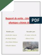 Rapport-de-sortie.docx