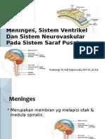 Pertemuan 7 (Jaringan Meninges, Sistem Ventrikel Dan Sistem Neurovaskular).ppt
