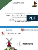 Alcantara Leiva Raiza Tatiana (2).pptx
